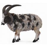 Овца четырехрогая (L)