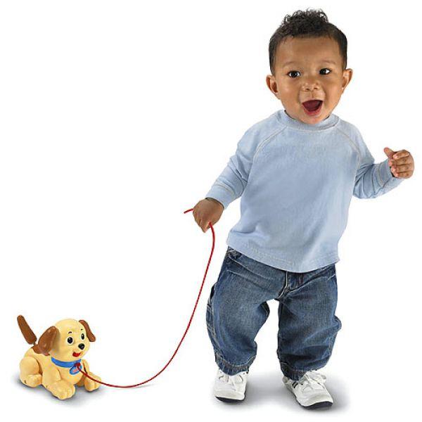 Игрушка 9447H обучающая Веселый щенок (светло-коричневый) 1109086 Fisher Price (MATTEL)